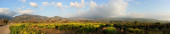 Panorama of the Golan Heights by Beivushtang